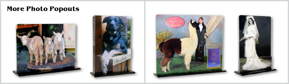 Equine Keepsake Boxes, Equine Music Boxes